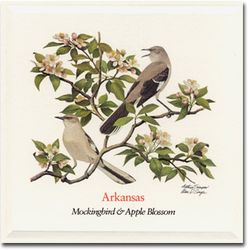 Arkansas_bird
